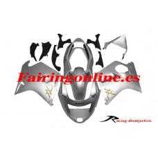 CBR1000XX, 96-07